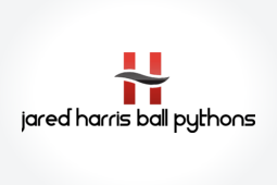 Jared Harris Ball Pythons