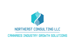 Northeast Consulting LLC