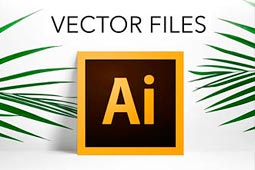 What is a vector file ?